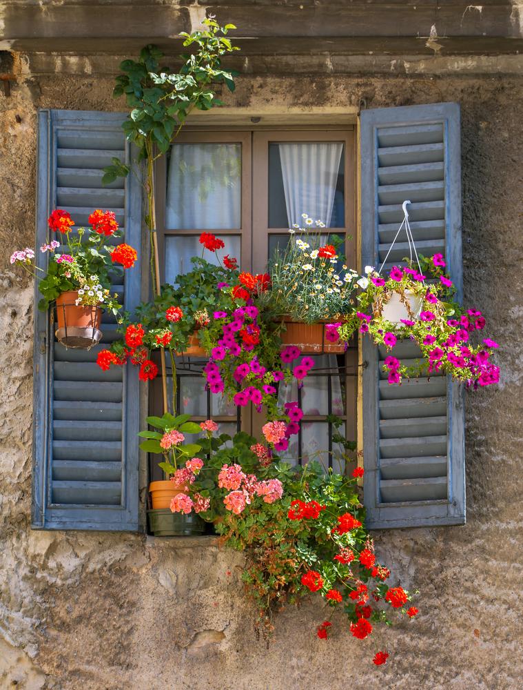Page not found powerscourt garden pavilion for Window garden